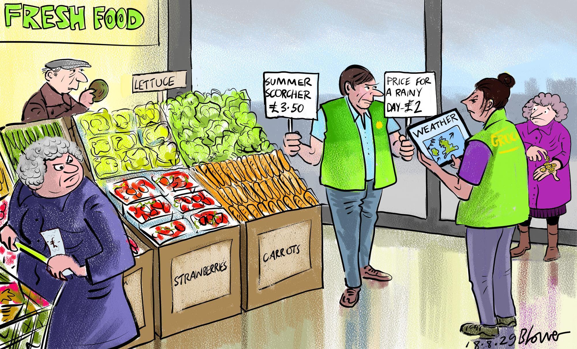 Retail Cartoon Take A Rain Check On Grocery Prices Cartoon Retail Week