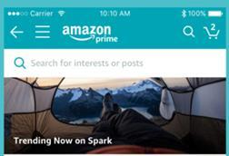 Screenshot amazon spark web