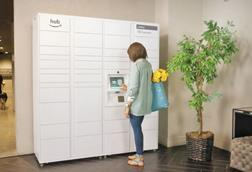 Amazon The Hub smart locker delivery